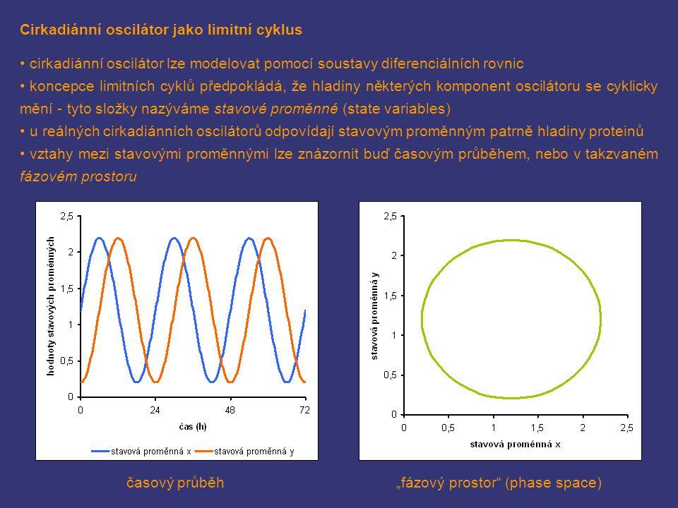 Cirkadiánní oscilátor jako limitní cyklus cirkadiánní oscilátor lze modelovat pomocí soustavy diferenciálních rovnic koncepce limitních cyklů předpokl