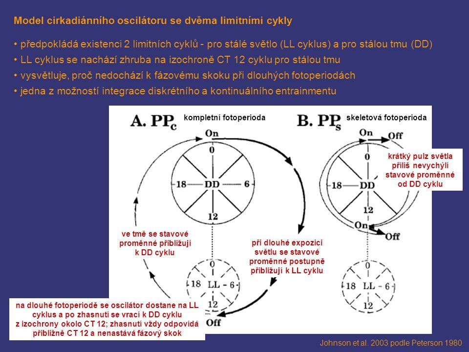 Johnson et al. 2003 podle Peterson 1980 Model cirkadiánního oscilátoru se dvěma limitními cykly předpokládá existenci 2 limitních cyklů - pro stálé sv