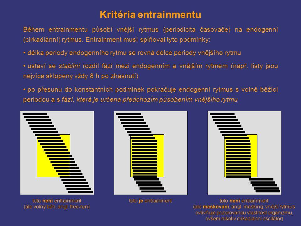 Kritéria entrainmentu Během entrainmentu působí vnější rytmus (periodicita časovače) na endogenní (cirkadiánní) rytmus. Entrainment musí splňovat tyto