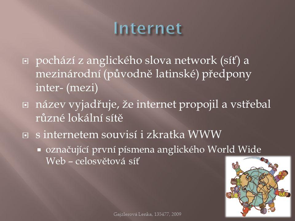  pochází z anglického slova network (síť) a mezinárodní (původně latinské) předpony inter- (mezi)  název vyjadřuje, že internet propojil a vstřebal