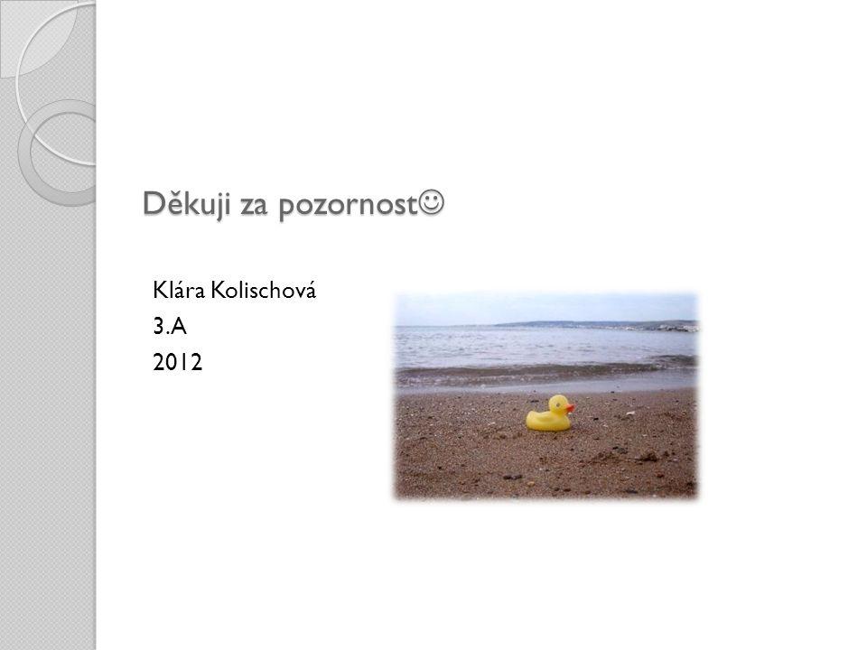 Děkuji za pozornost Děkuji za pozornost Klára Kolischová 3.A 2012