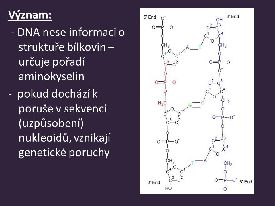 (z angl.) ribonucleicacid – RNA zodpovídá za přenos informací z DNA) Rozdělení: a)m-RNA (messenger, mediátor) -přenáší informaci z DNA do cytoplazmy na ribozómy – řídí produkci bílkovin b)t-RNA (transfer, transport) -přenáší aminokyseliny z cytoplazmy na ribozómy c) r-RNA (ribosom) - spolu s bílkovinami tvoří ribozómy