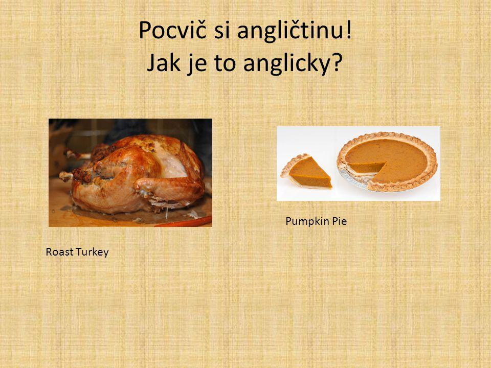 Pocvič si angličtinu! Jak je to anglicky? Roast Turkey Pumpkin Pie
