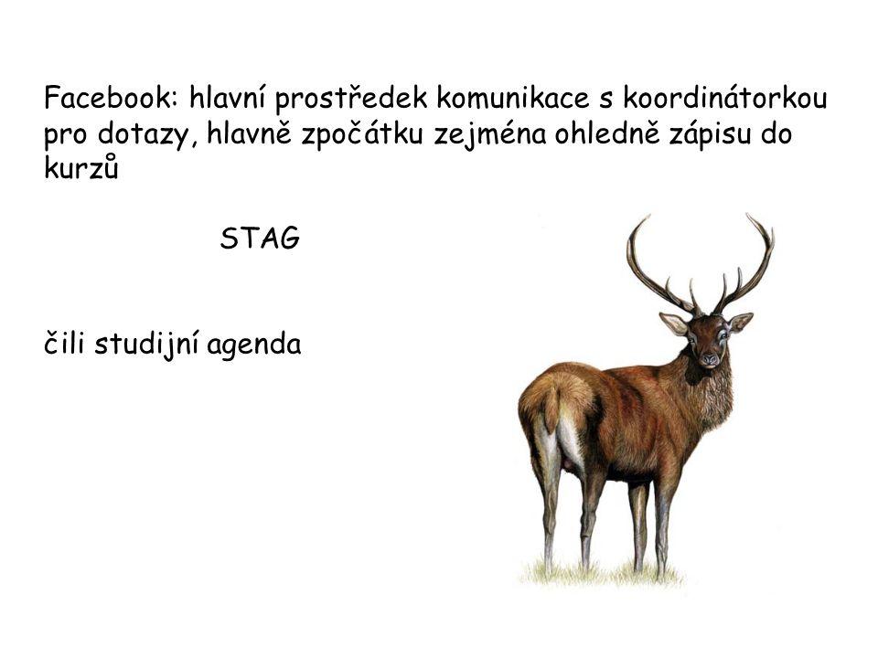 Zápis do kurzů Rozvrh KAA –bude viset na stránkách KAA http://www.anglistika.upol.cz/studium/rozvrh.