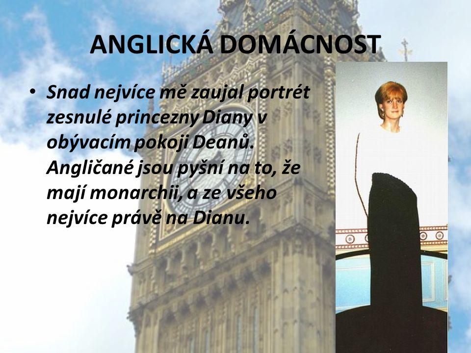 ANGLICKÁ DOMÁCNOST Snad nejvíce mě zaujal portrét zesnulé princezny Diany v obývacím pokoji Deanů. Angličané jsou pyšní na to, že mají monarchii, a ze