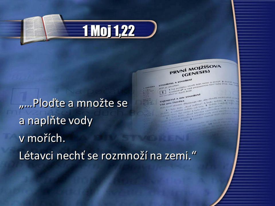 """1 Moj 1,22 """"…Ploďte a množte se a naplňte vody v mořích."""