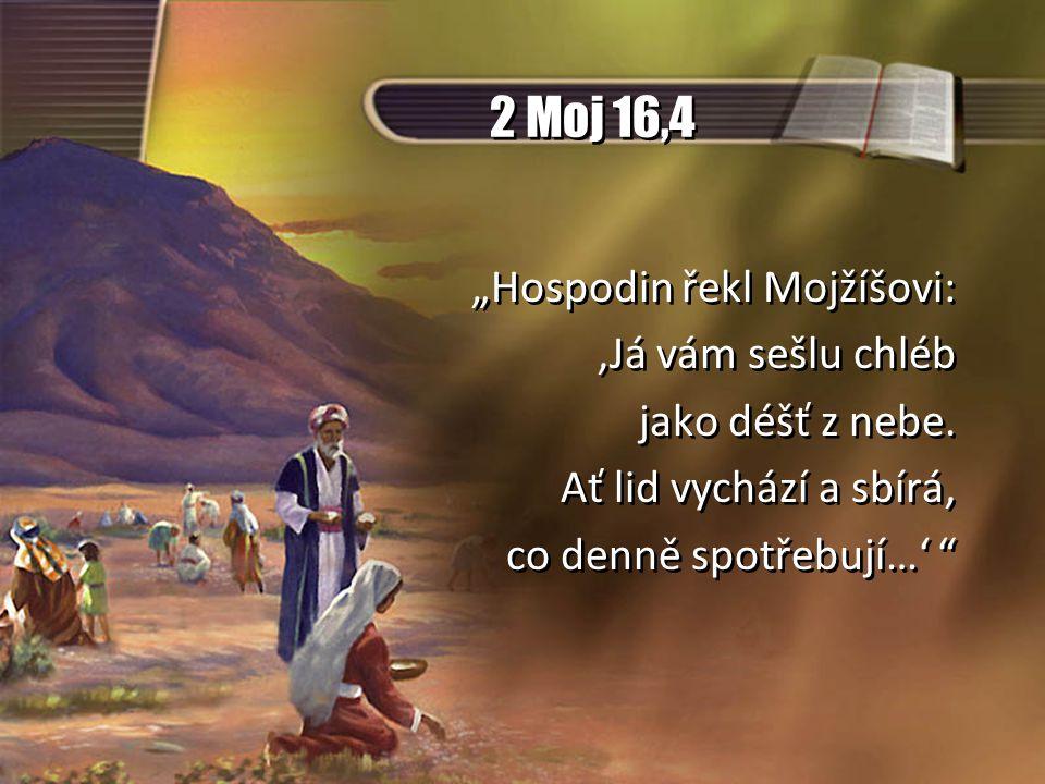 """2 Moj 16,4 """"Hospodin řekl Mojžíšovi: 'Já vám sešlu chléb jako déšť z nebe."""