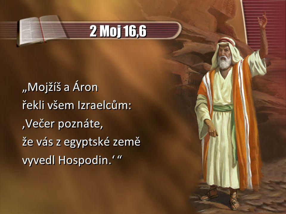 """2 Moj 16,6 """"Mojžíš a Áron řekli všem Izraelcům: 'Večer poznáte, že vás z egyptské země vyvedl Hospodin.' """"Mojžíš a Áron řekli všem Izraelcům: 'Večer poznáte, že vás z egyptské země vyvedl Hospodin.'"""