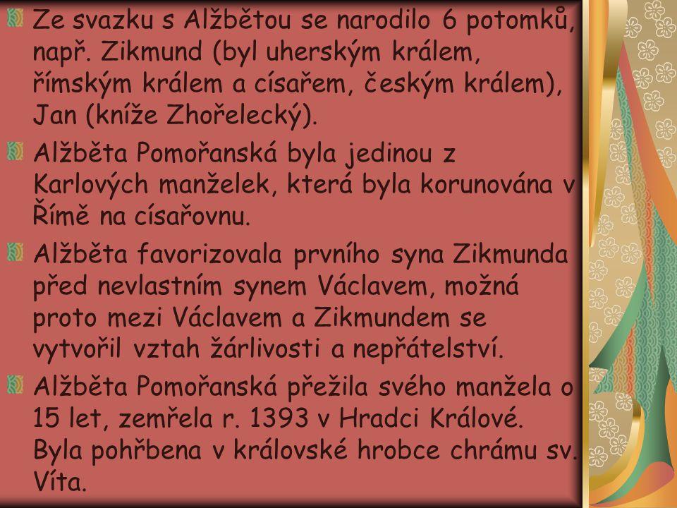 Ze svazku s Alžbětou se narodilo 6 potomků, např. Zikmund (byl uherským králem, římským králem a císařem, českým králem), Jan (kníže Zhořelecký). Alžb