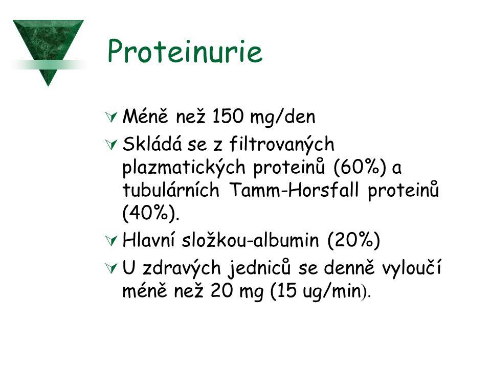 Proteinurie  Méně než 150 mg/den  Skládá se z filtrovaných plazmatických proteinů (60%) a tubulárních Tamm-Horsfall proteinů (40%).  Hlavní složkou