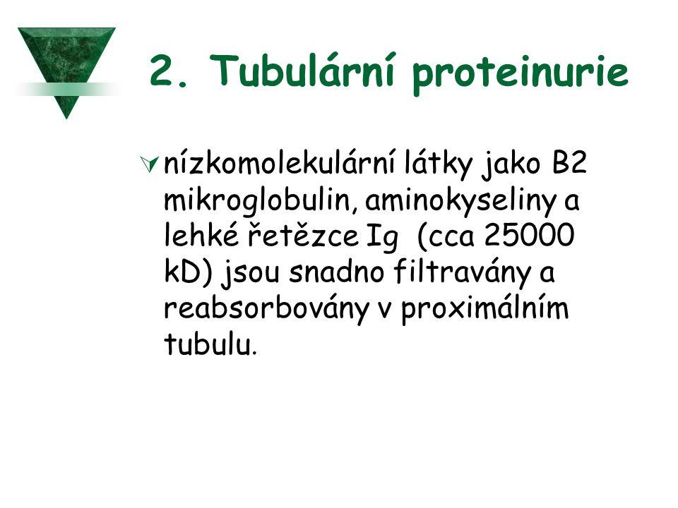 2. Tubulární proteinurie  nízkomolekulární látky jako B2 mikroglobulin, aminokyseliny a lehké řetězce Ig (cca 25000 kD) jsou snadno filtravány a reab
