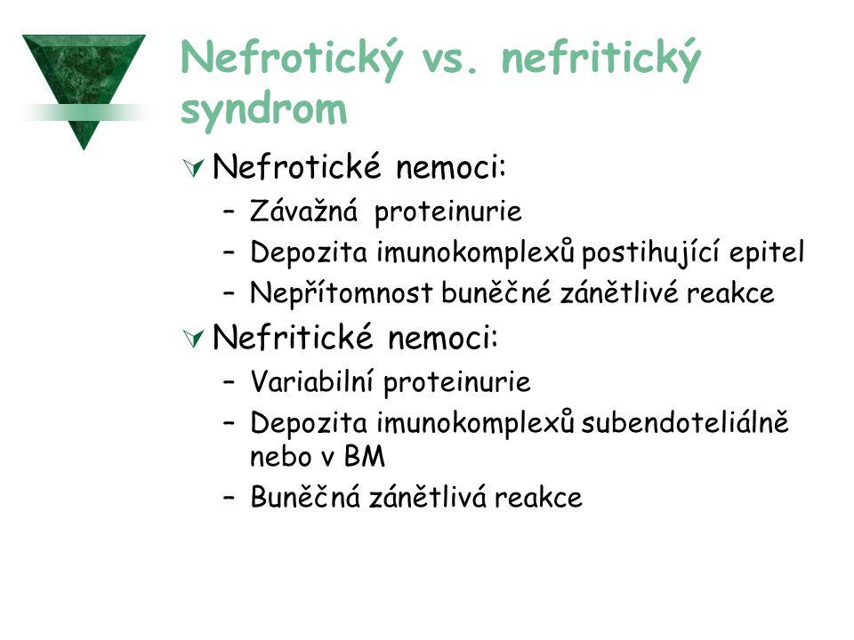 Nefrotický vs. nefritický syndrom  Nefrotické nemoci: –Závažná proteinurie –Depozita imunokomplexů postihující epitel –Nepřítomnost buněčné zánětlivé