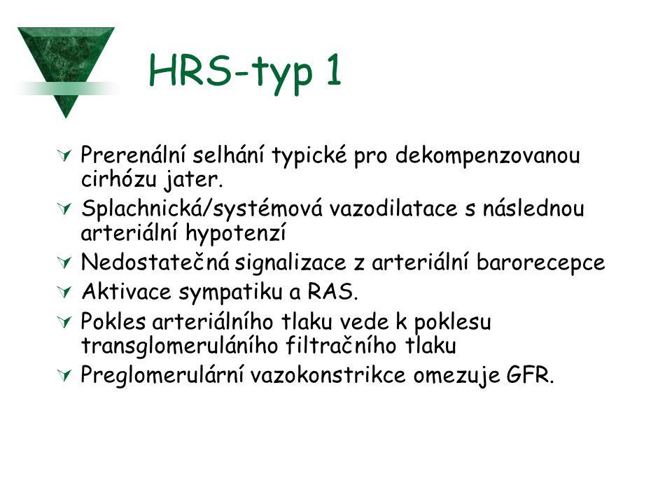 HRS-typ 1  Prerenální selhání typické pro dekompenzovanou cirhózu jater.  Splachnická/systémová vazodilatace s následnou arteriální hypotenzí  Nedo