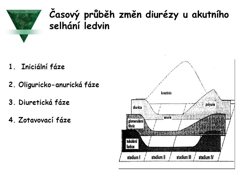 Časový průběh změn diurézy u akutního selhání ledvin 1. Iniciální fáze 2. Oliguricko-anurická fáze 3. Diuretická fáze 4. Zotavovací fáze