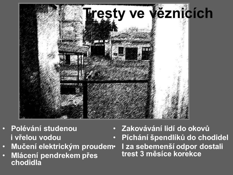 Pracovní tábor Chrlice u Brna Byla zde mezi politickými vězenkyněmi vězněna i spousta prostitutek, ke kterým se chovali lépe než k politickým V jedné malé cele bylo i 20 žen Byla zde hrozná hygiena Na pokojích s nimi pobývali šváby,myši a kdejaká havěť