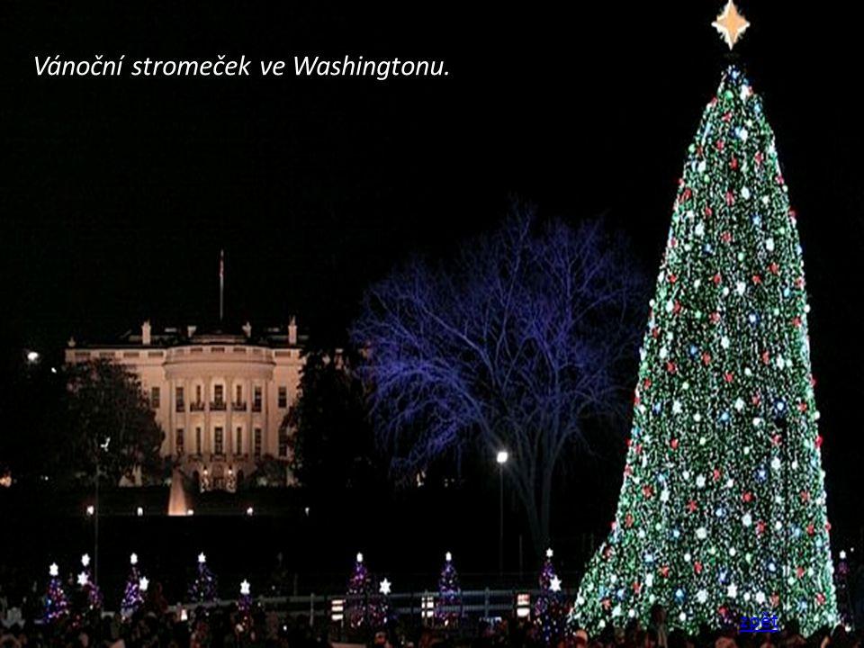 Vánoční stromeček ve Washingtonu. zpět