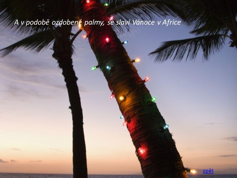 A v podobě ozdobené palmy, se slaví Vánoce v Africe zpět