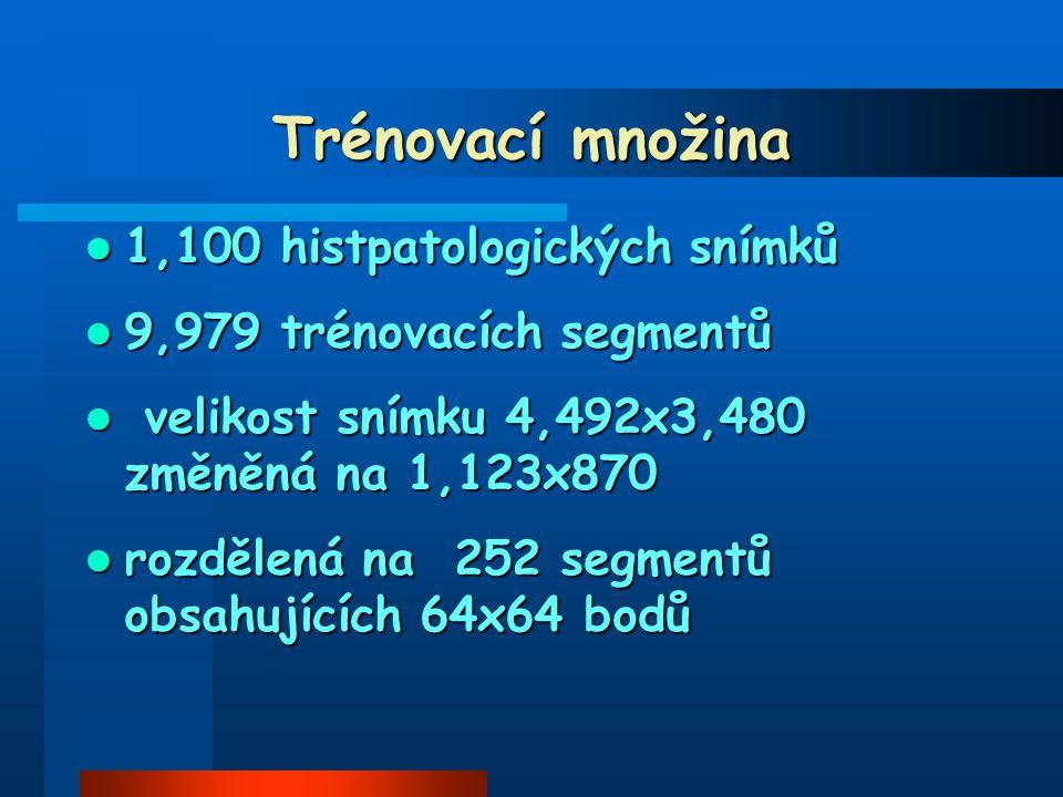 1,100 histpatologických snímků 1,100 histpatologických snímků 9,979 trénovacích segmentů 9,979 trénovacích segmentů velikost snímku 4,492x3,480 změněná na 1,123x870 velikost snímku 4,492x3,480 změněná na 1,123x870 rozdělená na 252 segmentů obsahujících 64x64 bodů rozdělená na 252 segmentů obsahujících 64x64 bodů Trénovací množina