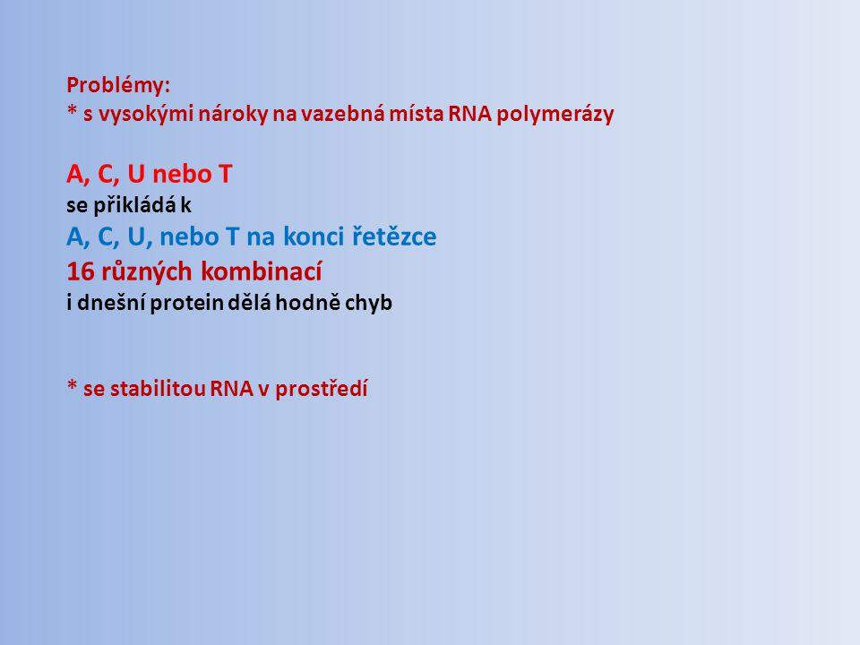Problémy: * s vysokými nároky na vazebná místa RNA polymerázy A, C, U nebo T se přikládá k A, C, U, nebo T na konci řetězce 16 různých kombinací i dne