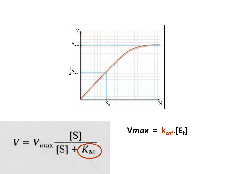 Vmax = k cat.[E t ]