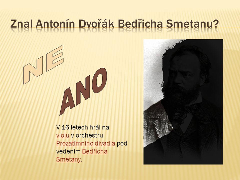 V 16 letech hrál na violu v orchestru violu Prozatímního divadlaProzatímního divadla pod vedením Bedřicha Smetany.Bedřicha Smetany