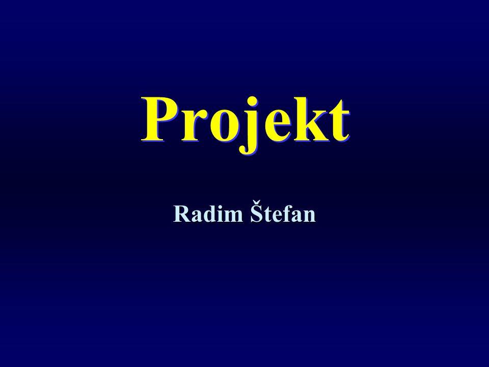 Dokumenty projektu Vlastní projekt – Wordu Rozpočet projektu – Excel Prezentace projektu – PowerPoint