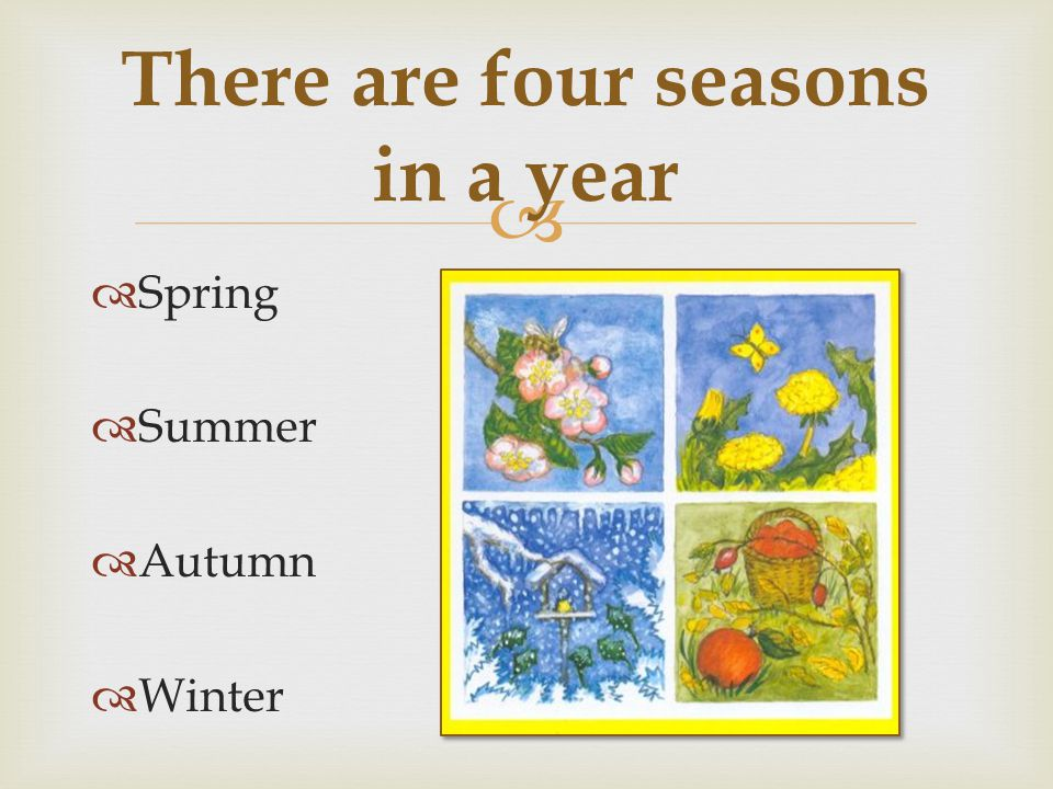  Spring  Summer  Autumn  Winter There are four seasons in a year