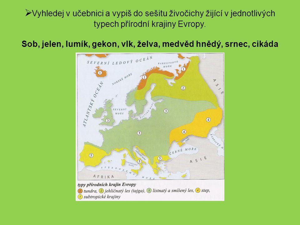  Vyhledej v učebnici a vypiš do sešitu živočichy žijící v jednotlivých typech přírodní krajiny Evropy. Sob, jelen, lumík, gekon, vlk, želva, medvěd h