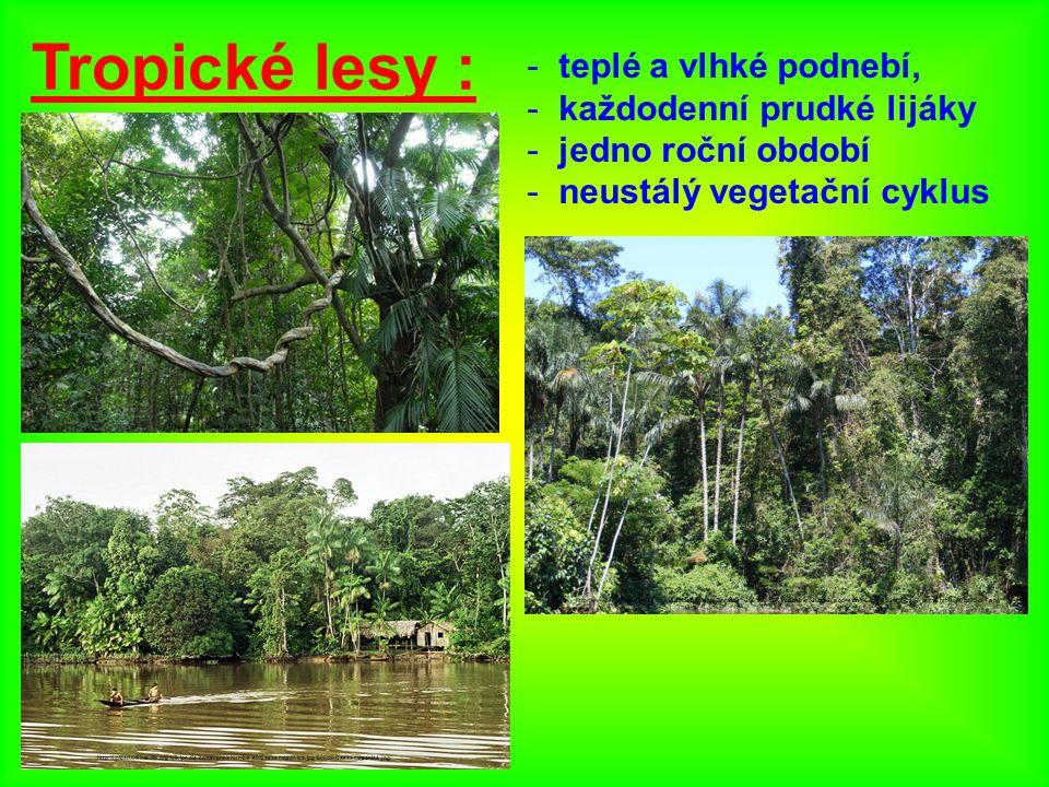 Tropické lesy : - teplé a vlhké podnebí, - každodenní prudké lijáky - jedno roční období - neustálý vegetační cyklus http://www.oskole.sk/userfiles/image/zaida/zemepis/Zemepis%206%20-%20Podnebie%20a%20podnebn%C3%A9%20p%C3%A1sma_html_m7bb75d01.png http://nd01.jxs.cz/961/201/264457a798_49851383_o2.jpg http://upload.wikimedia.org/wikipedia/commons/thumb/e/e6/Casaamazonica.jpg/800px-Casaamazonica.jpg