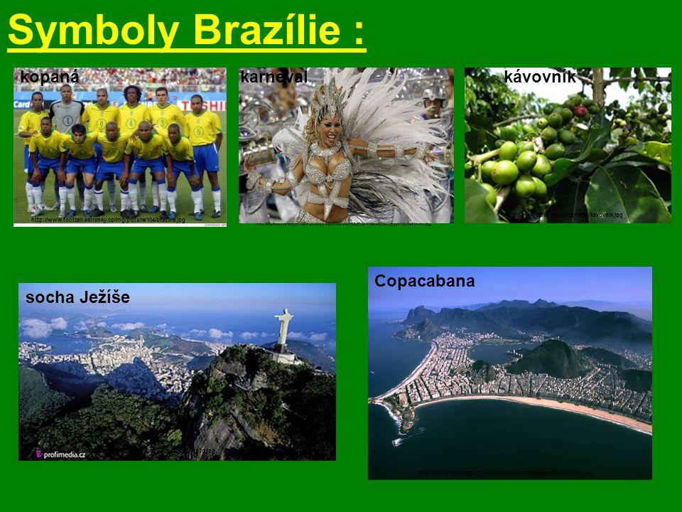 Symboly Brazílie : kopaná http://www.football.estranky.cz/img/picture/104/brazilie.jpg karneval http://img.ihned.cz/attachment.php/800/29261800/ais4BD