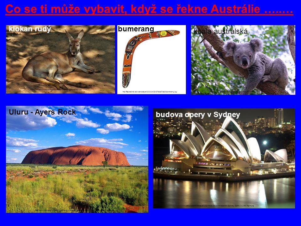 Co se ti může vybavit, když se řekne Austrálie …..… klokan rudý http://www.foto-tapety.cz/images/1680/zvirata/klokan-rudy-zoo.jpg http://files.zajimav