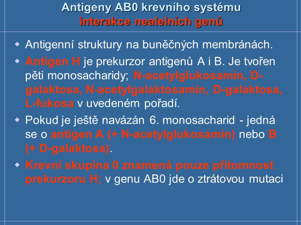 Antigeny AB0 krevního systému interakce nealelních genů  Antigenní struktury na buněčných membránách.  Antigen H je prekurzor antigenů A i B. Je tvo