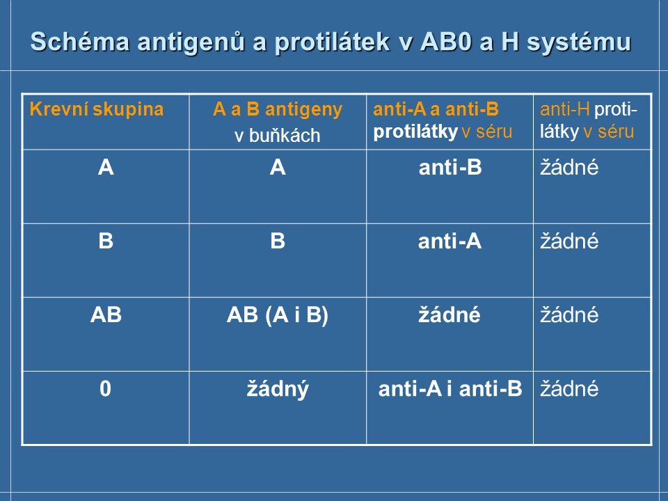 Schéma antigenů a protilátek v AB0 a H systému Krevní skupinaA a B antigeny v buňkách anti-A a anti-B protilátky v séru anti-H proti- látky v séru AAa