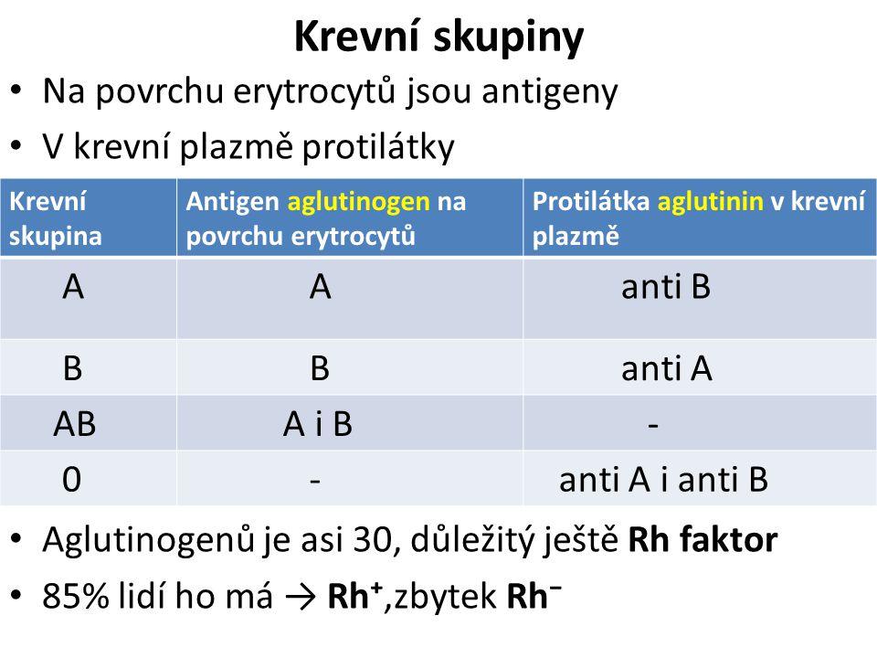 Krevní skupiny Na povrchu erytrocytů jsou antigeny V krevní plazmě protilátky Aglutinogenů je asi 30, důležitý ještě Rh faktor 85% lidí ho má → Rh⁺,zb