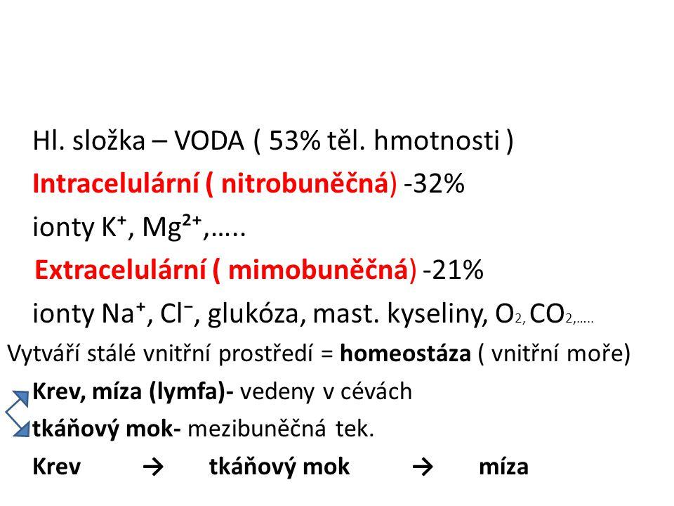 Hl. složka – VODA ( 53% těl. hmotnosti ) Intracelulární ( nitrobuněčná) -32% ionty K⁺, Mg²⁺,….. Extracelulární ( mimobuněčná) -21% ionty Na⁺, Cl⁻, glu