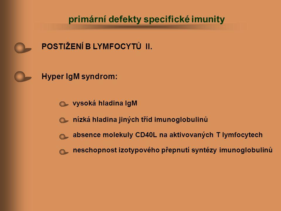 POSTIŽENÍ B LYMFOCYTŮ II. Hyper IgM syndrom: vysoká hladina IgM nízká hladina jiných tříd imunoglobulinů absence molekuly CD40L na aktivovaných T lymf