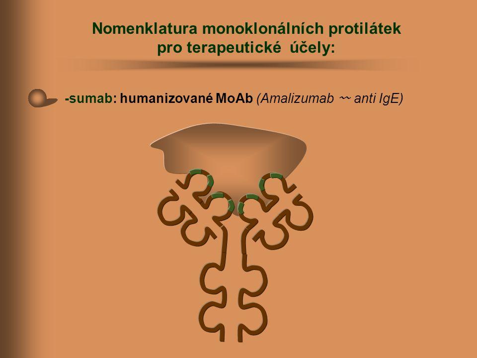 Nomenklatura monoklonálních protilátek pro terapeutické účely: -sumab: humanizované MoAb (Amalizumab 〰 anti IgE)