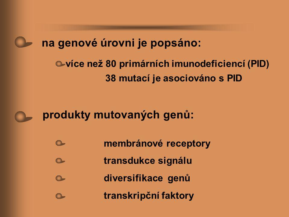 více než 80 primárních imunodeficiencí (PID) 38 mutací je asociováno s PID membránové receptory transdukce signálu diversifikace genů transkripční fak
