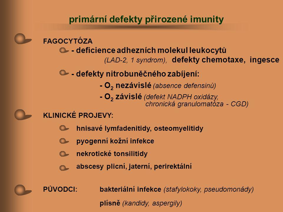 FAGOCYTÓZA - deficience adhezních molekul leukocytů (LAD-2, 1 syndrom), defekty chemotaxe, ingesce - defekty nitrobuněčného zabíjení: - O 2 nezávislé
