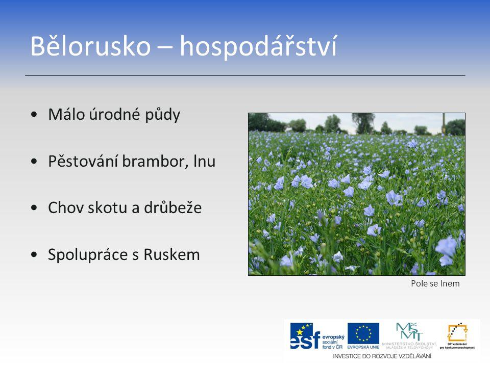 Bělorusko – hospodářství Málo úrodné půdy Pěstování brambor, lnu Chov skotu a drůbeže Spolupráce s Ruskem Pole se lnem
