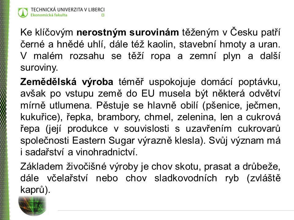Ke klíčovým nerostným surovinám těženým v Česku patří černé a hnědé uhlí, dále též kaolin, stavební hmoty a uran.