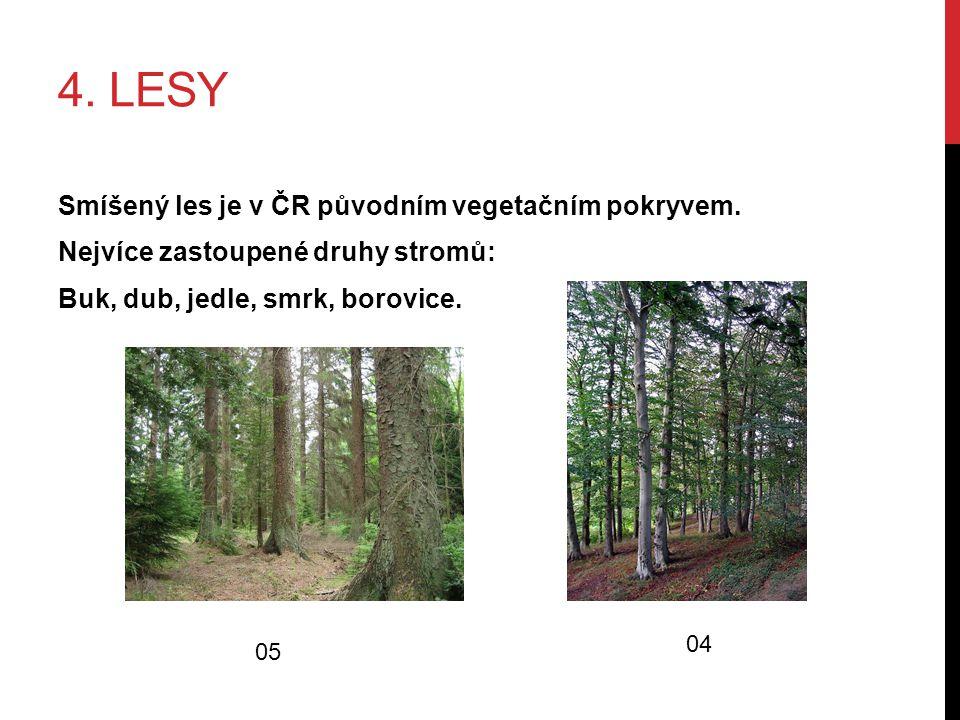 4. LESY Smíšený les je v ČR původním vegetačním pokryvem. Nejvíce zastoupené druhy stromů: Buk, dub, jedle, smrk, borovice. 04 05