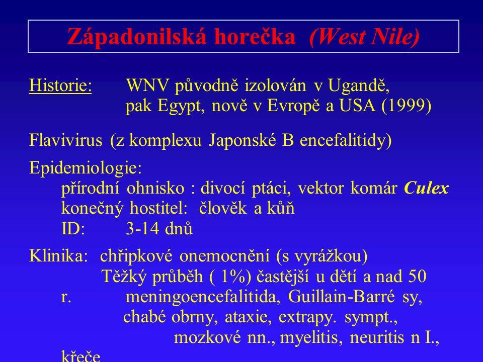 Západonilská horečka (West Nile) Historie:WNV původně izolován v Ugandě, pak Egypt, nově v Evropě a USA (1999) Flavivirus (z komplexu Japonské B encef