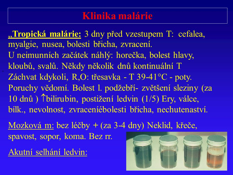 """Klinika malárie """" """"Tropická malárie: 3 dny před vzestupem T: cefalea, myalgie, nusea, bolesti břicha, zvracení. U neimunních začátek náhlý: horečka, b"""