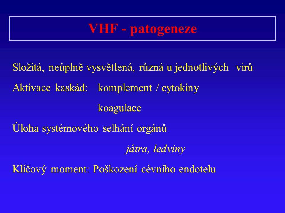 VHF - patogeneze Složitá, neúplně vysvětlená, různá u jednotlivých virů Aktivace kaskád:komplement / cytokiny koagulace Úloha systémového selhání orgánů játra, ledviny Klíčový moment: Poškození cévního endotelu