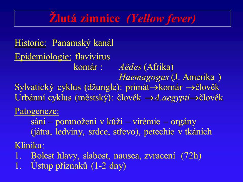 Žlutá zimnice (Yellow fever) Historie: Panamský kanál Epidemiologie: flavivirus komár : Aëdes (Afrika) Haemagogus (J.