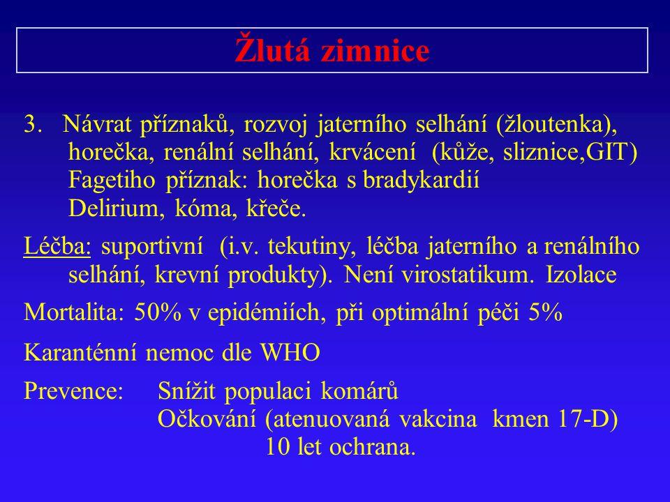 Žlutá zimnice 3.