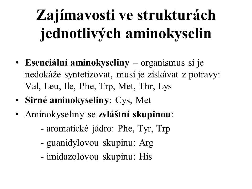 Zajímavosti ve strukturách jednotlivých aminokyselin Esenciální aminokyseliny – organismus si je nedokáže syntetizovat, musí je získávat z potravy: Va