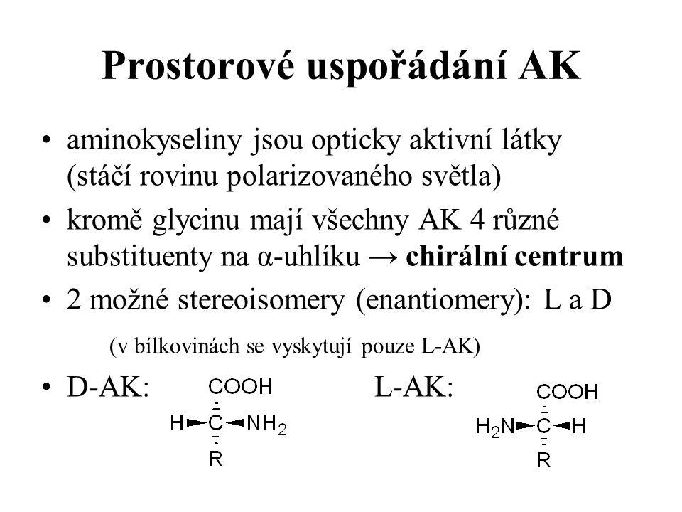 Prostorové uspořádání AK aminokyseliny jsou opticky aktivní látky (stáčí rovinu polarizovaného světla) kromě glycinu mají všechny AK 4 různé substitue