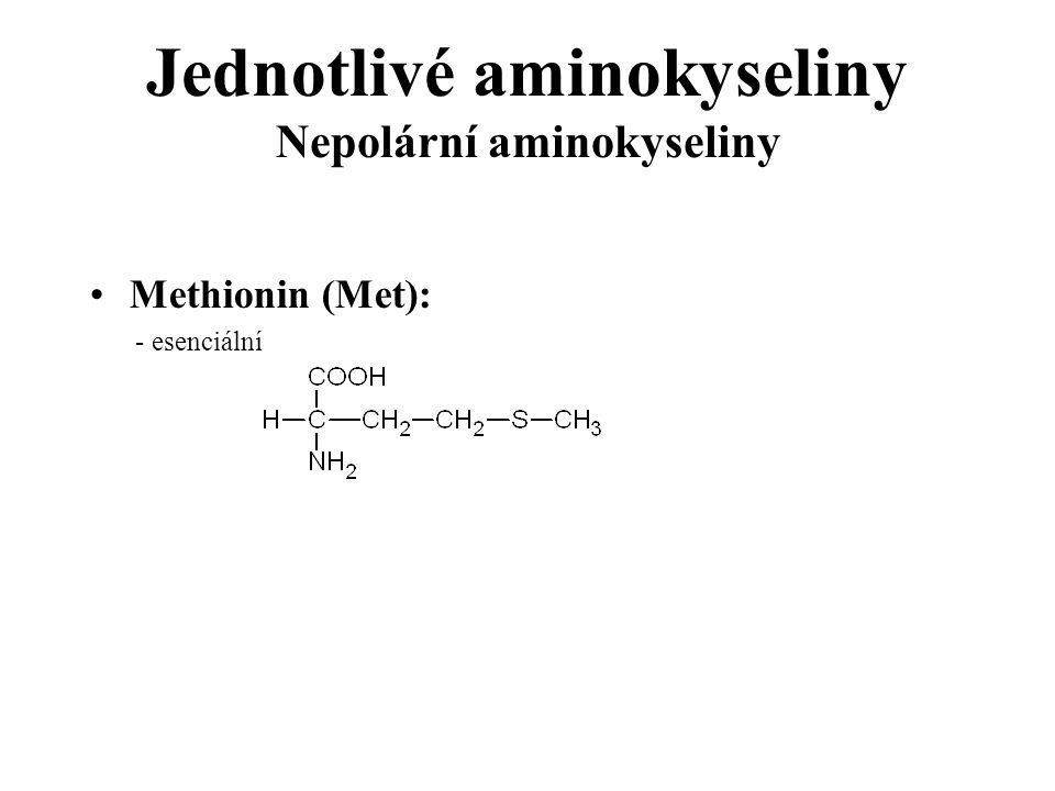 Jednotlivé aminokyseliny Nepolární aminokyseliny Methionin (Met): - esenciální